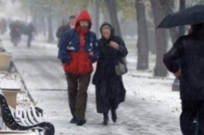 2 января в Петербурге ожидается шквалистый ветер