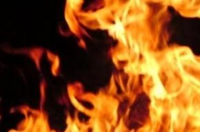 На Боровой улице в огне погиб мужчина