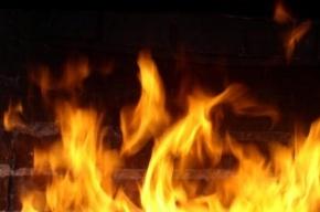 В первый день нового года в Петербурге произошло десять пожаров