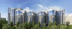 Что ждет рынок жилья Петербурга в 2015 году: Фоторепортаж