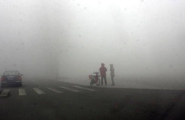Штормовое предупреждение объявлено в Ленобласти