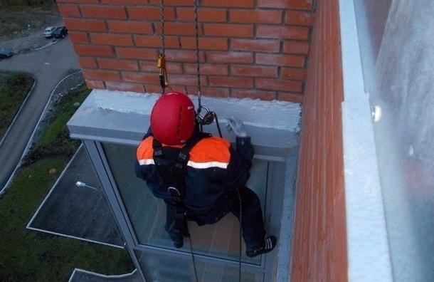 В Выборге пенсионерка перерезала трос ревнивца-альпиниста, висевшего на восьмом этаже
