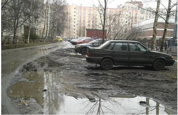 Активисты призывают бороться с грязью на дорогах и тротуарах
