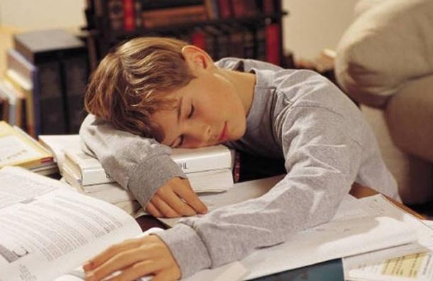 Российских учителей обяжут не задавать много домашнего задания