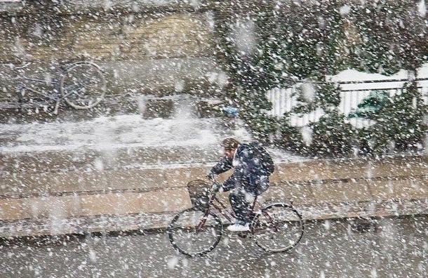 Петербургские велосипедисты  отправятся «На работу на велосипеде зимой»