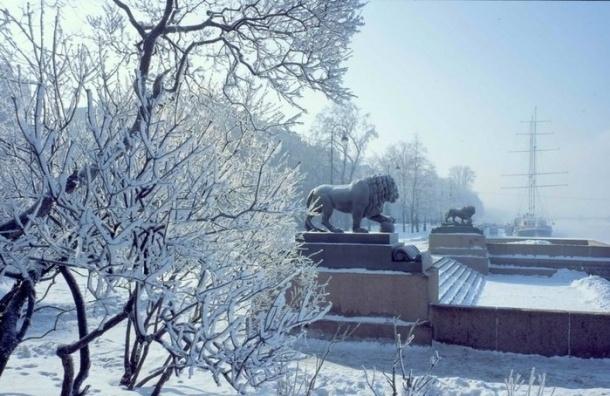 В Петербурге ожидают похолодание и гололед