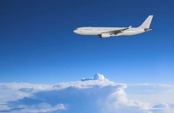 Самолет, летевший из Москвы в Петербург, вернулся из-за дебошира-индийца