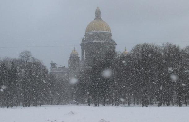 7 февраля в Петербурге ожидается мокрый снег