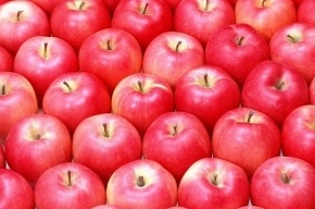10 тонн сушеных яблок прибыло в Петербург с ошибками в документах