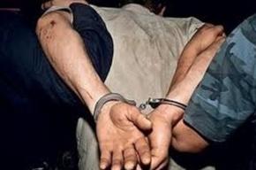 В Колпино мигрант изнасиловал попутчицу, а затем посадил её на такси