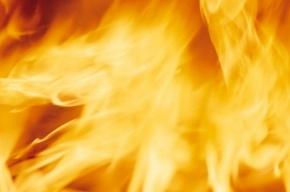 25 человек эвакуировали из-за пожара в доме на Заневском