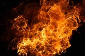 Четверых эвакуировали в результате пожара на Гаванской
