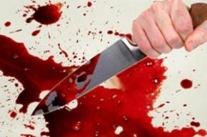 В Ленобласти после убийства приятеля злоумышленник покончил с собой