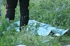 Житель Петербурга убил приятеля, закопав тело в парке на проспекте Мечникова