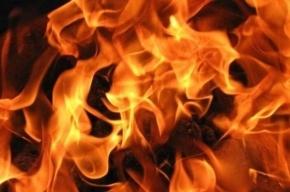 Пять человек эвакуировали из-за пожара на проспекте Славы