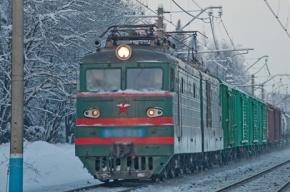 На станции «Удельная» грузовой поезд сбил человека