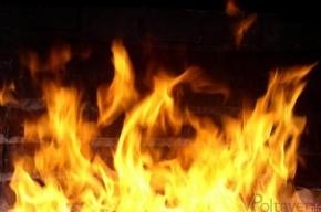 Прошедшей ночью в Петербурге сгорели два автомобиля