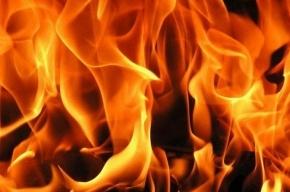 68 человек тушили пожар на Якорной улице
