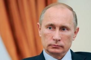 Песня о Путине группы Rammelhof стала интернет-мемом