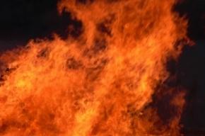 Несколько строительных вагончиков сгорели в Невском районе