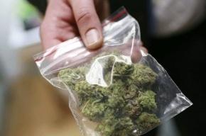 Наркополицейские ликвидировали преступную группу, торгующую наркотиками в Купчино