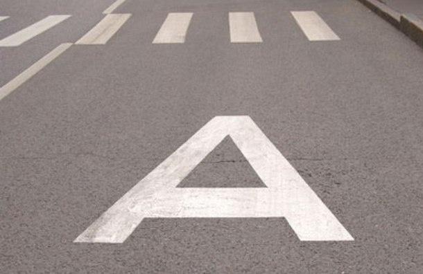 На Пулковском шоссе появится выделенная полоса для общественного транспорта