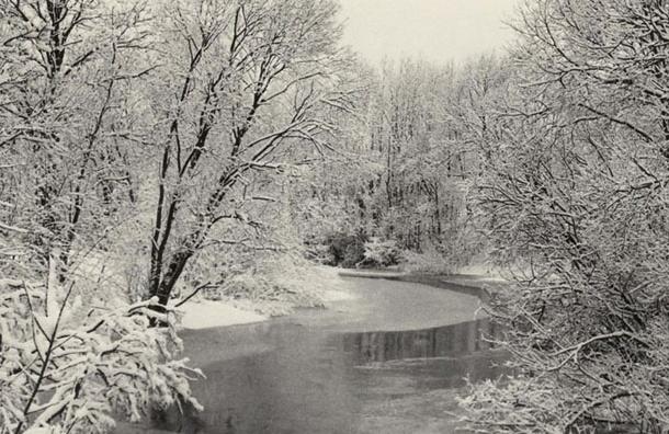 В пятницу в Ленобласти выпадет мокрый снег