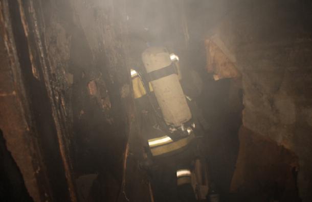 В Петербурге в пожаре на Витебском пострадала женщина