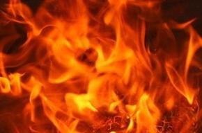 11 человек эвакуировали в результате пожара в коммуналке на Савушкина