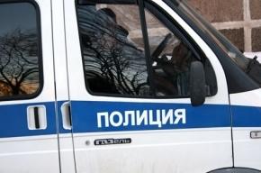 В Петербурге экс-муж стал заказчиком убийства женщины