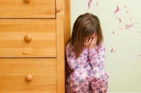 В Петербурге задержали педофила, который соблазнил 14-летнюю школьницу