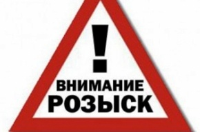 Маньяка с канцелярским ножом ищут в Петербурге на Петроградской стороне