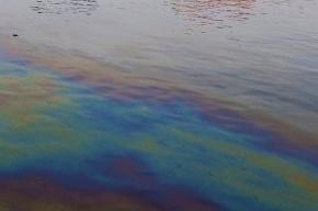 В Петербурге в Большом порту обнаружили разлив мазута