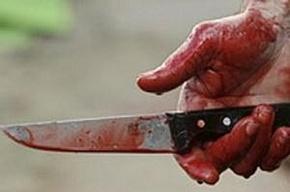 В Ленобласти мужчина пытался зарезать своего брата
