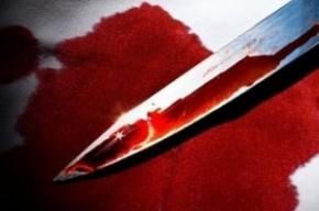 В результате драки в Кронштадте мужчина порезал троих