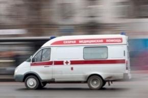 На Таллинском шоссе в ДТП погибла двухлетняя девочка