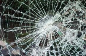 Двух братьев-хулиганов задержали за разбитое лобовое стекло и отломанные дворники