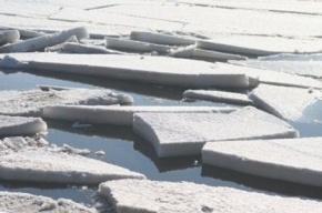 В Курортном районе Петербурга ребенок провалился под лед