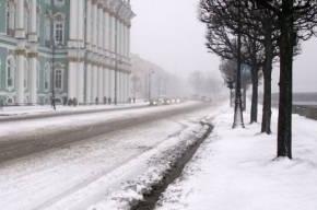 В Петербурге выпал снег