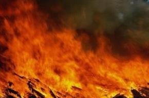 10 человек эвакуировали в результате пожара в Красном Селе