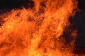 В коммуналке на Большой Монетной тушили пожар 1-бис