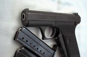 В Невском районе Петербурга мужчина воровал из квартир оружие