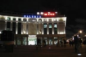В центре Петербурга в массовой драке убили приезжего из Дагестана