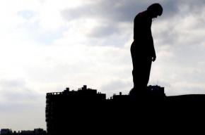 В Купчино психически больной житель Металлостроя сбросился с крыши