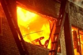 В пожаре в Ольгино погиб уроженец Донецка
