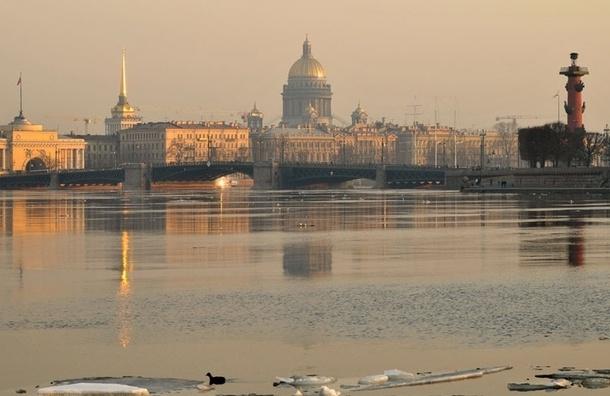 Ближайшие дни в Петербурге будет ветер и гололед