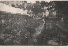 Юсуповский дворец во время блокады, фото из архива Юсуповского дворца: Фоторепортаж