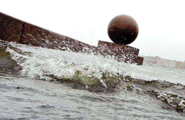 В Петербург придет сильный ветер