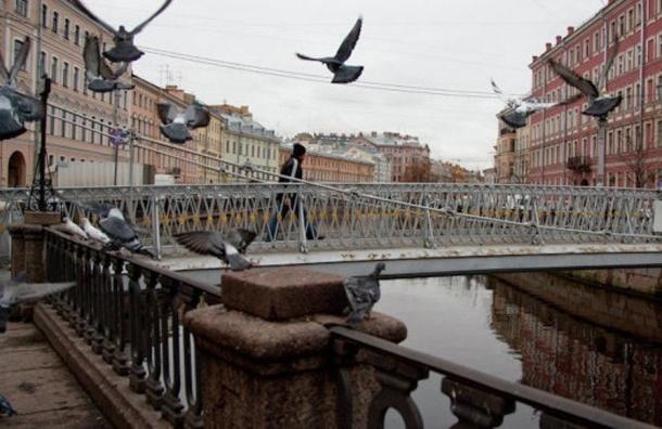 Апрель не будет баловать теплом: Петербург ожидает прохлада и сильные дожди
