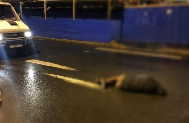 ДТП в Петроградском районе унесло жизнь пешехода